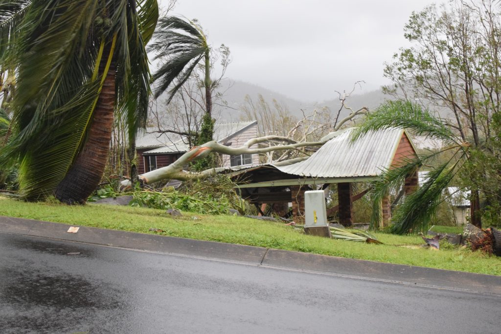 A tree falls on a garage in Airlie Beach during Cyclone Debbie