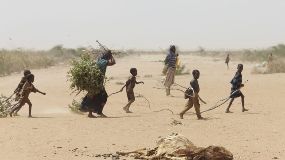 20 million people are affected by the drought in East Africa
