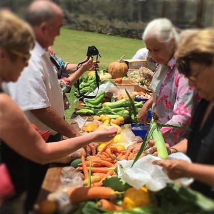 Enjoying the harvest on Norfolk Island for Thanksgiving