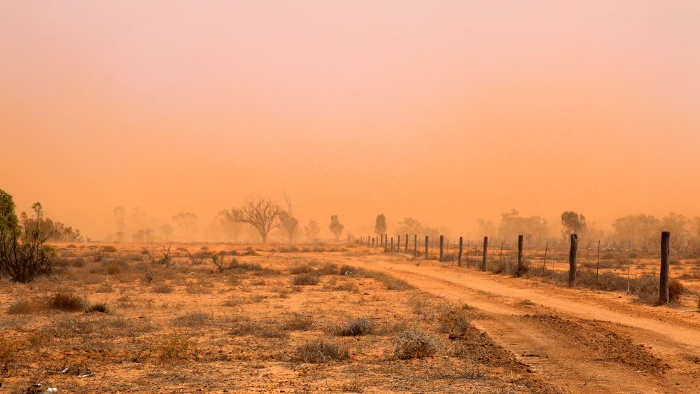 """The ground is dust and dirt now,"" says Skye Agar of her family's property in Wyandra, in remote southwest Queensland."