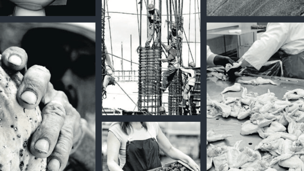 Images from the Progress Report on Catholic Action in Australia to Eradicate Modern Slavery in Supply Chains.