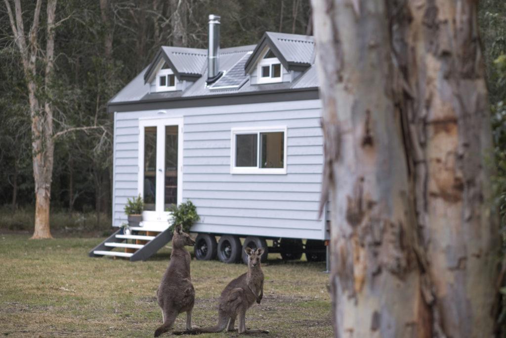 Image courtesy of Designer Eco Tiny Homes: https://designerecotinyhomes.com.au/