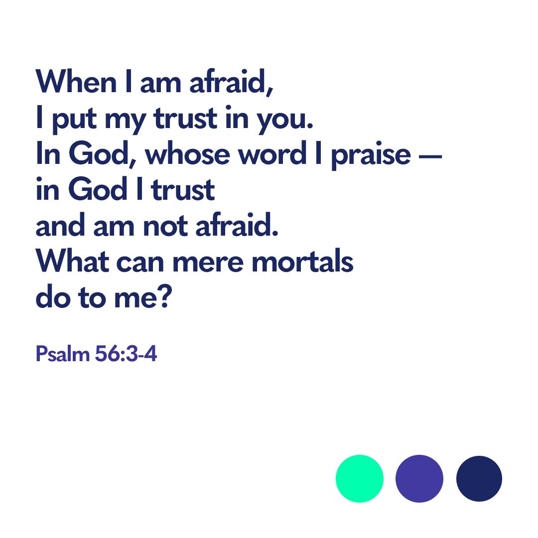 Bible verse Psalm 56:3-4