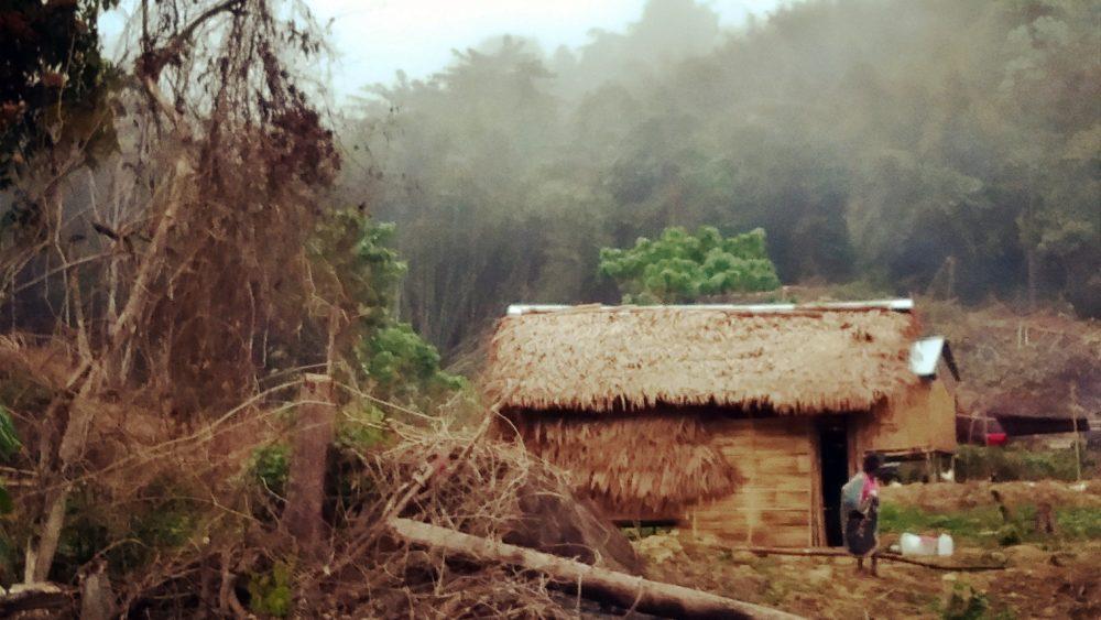 Bible translator village