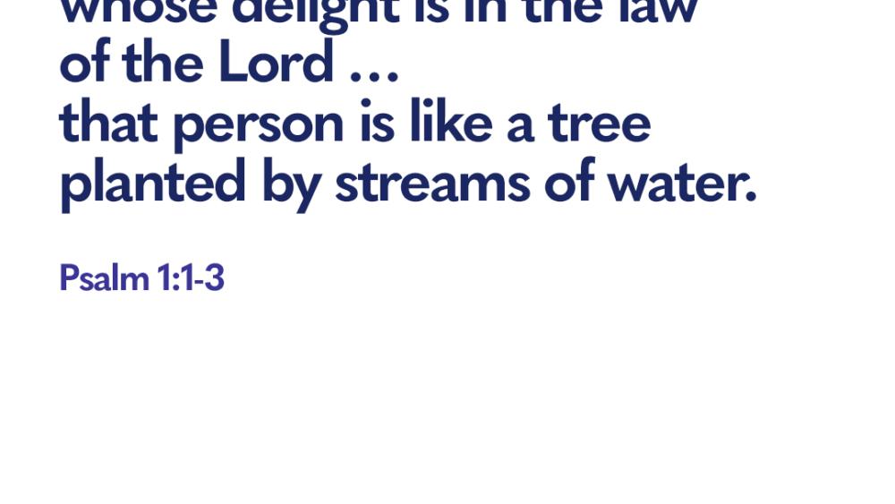 Bible verse Psalm 1 1 3